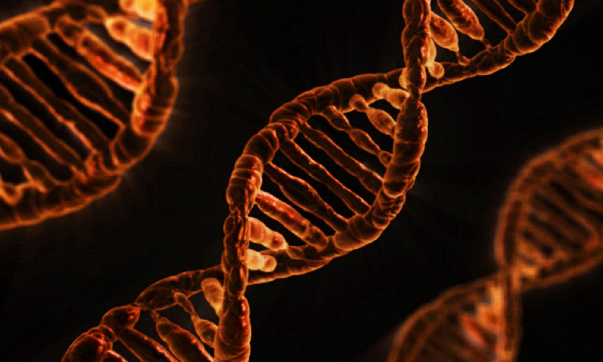 Nagy gén diagnosztika